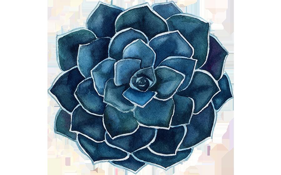 Liza-Morgan-Succulent-Blue-600-wide-left.png