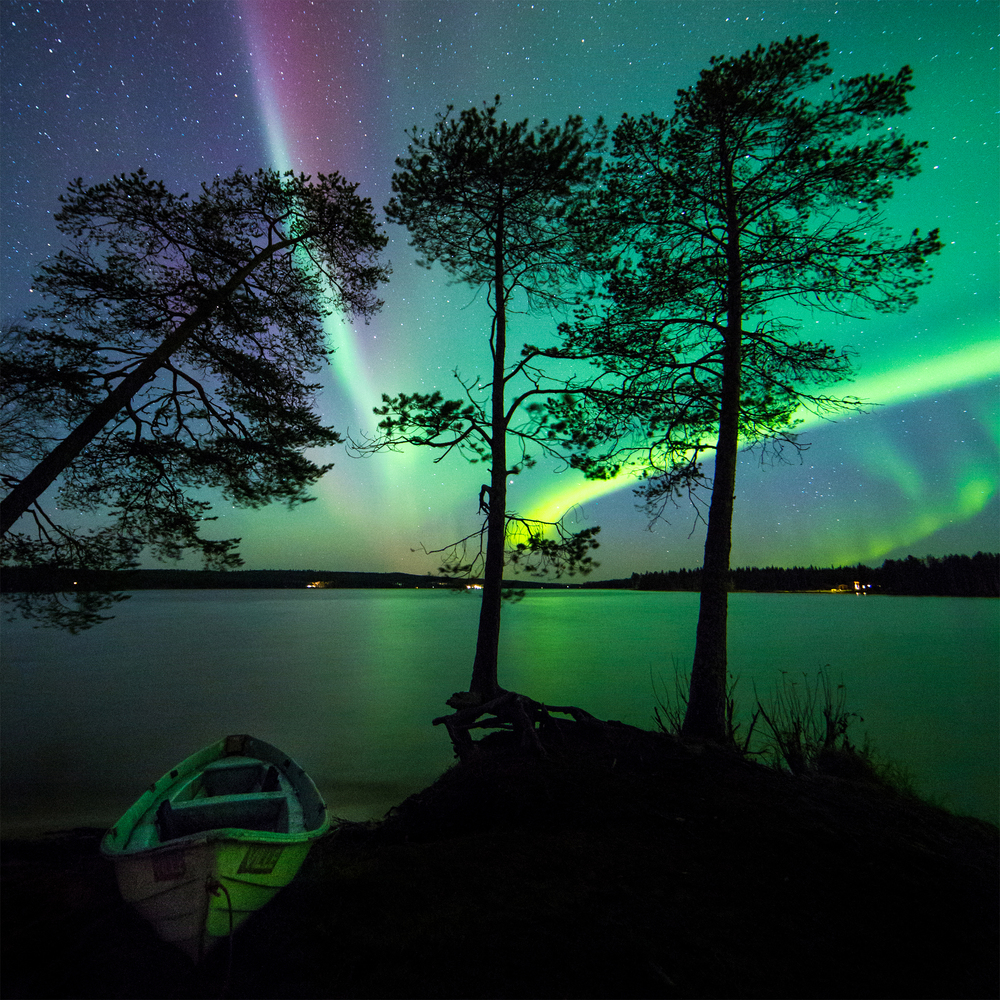 One night in Lapland
