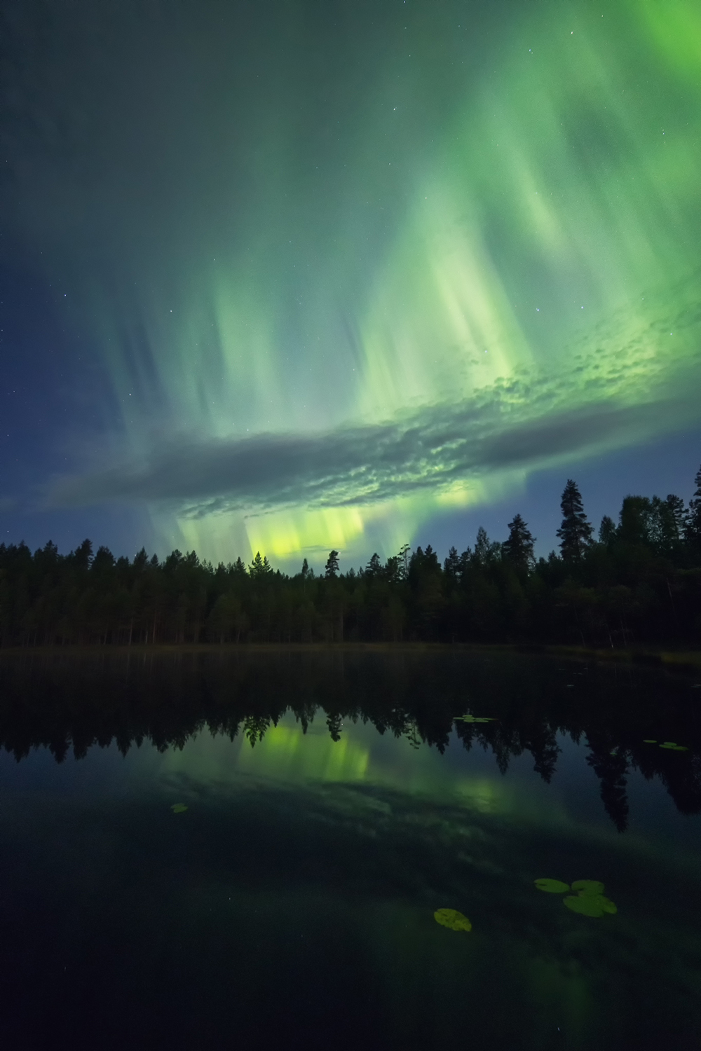 """Aurora magic"" Location: Leivonmäki National Park - August 2016"