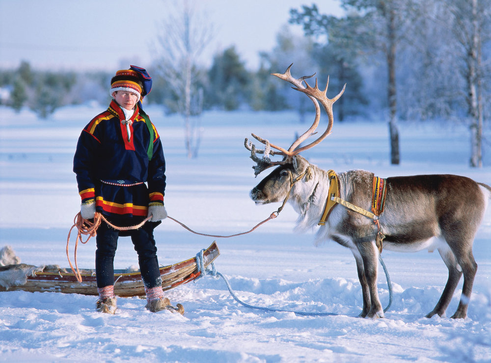 Sami sled driver with reindeer  Image source