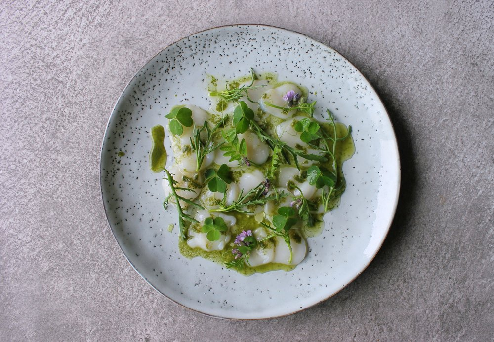"""When making fine dishes, I like to do it simple, like this! Scallop carpaccio with sea sandwort juice and wild herbs"""