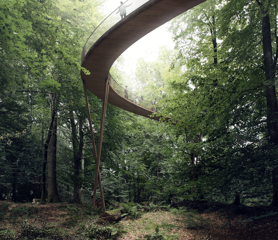 CampAdventure_TheTreetopExperience_04_∏_EFFEKT.png