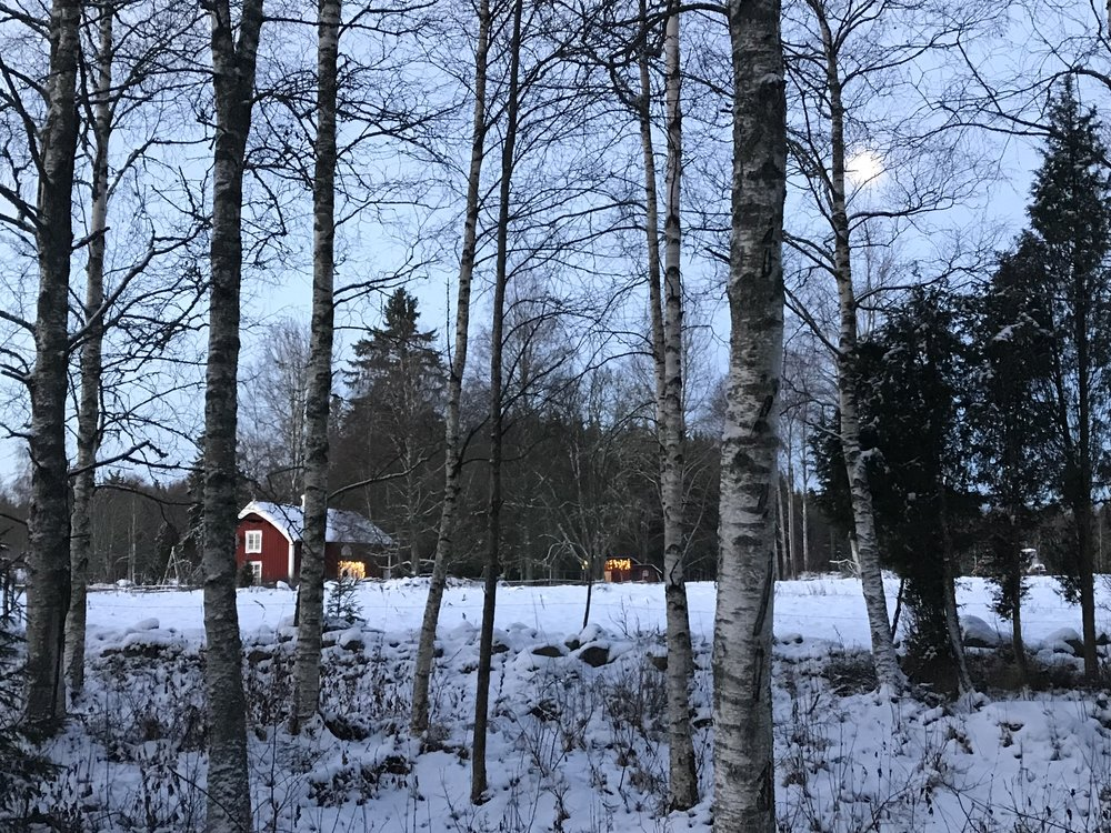 Hej Living - Nordique - torp winter.jpg