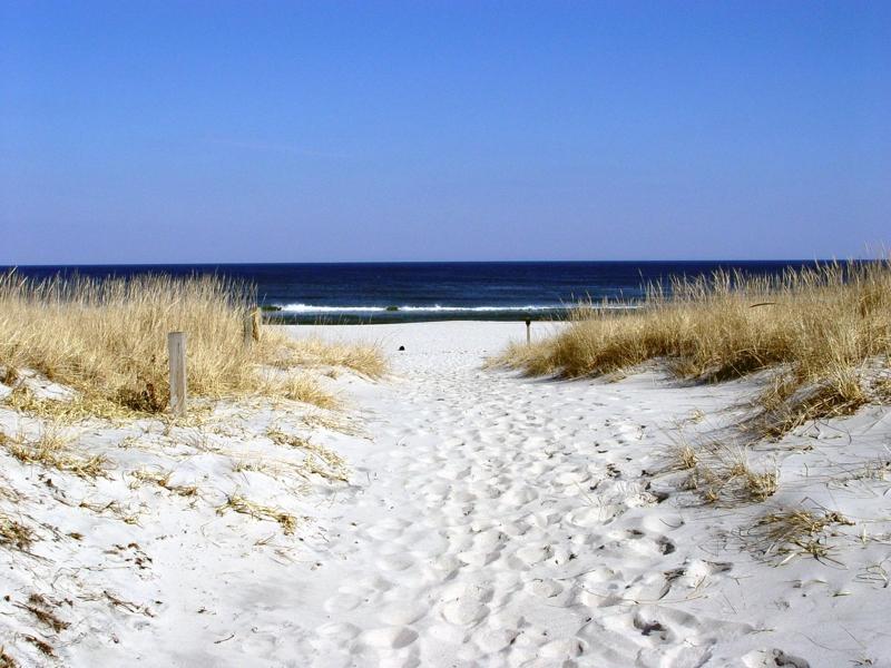 nj shore - 2.jpg