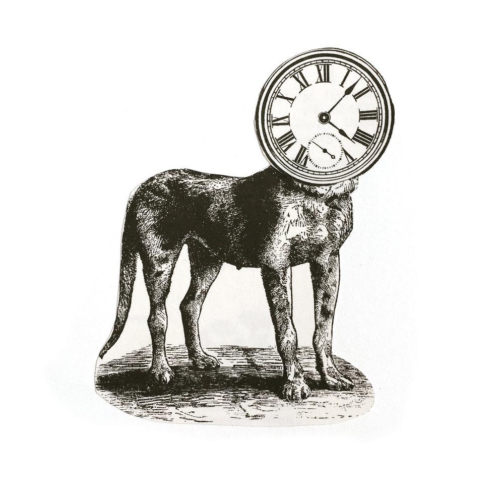 NY Dog Minute