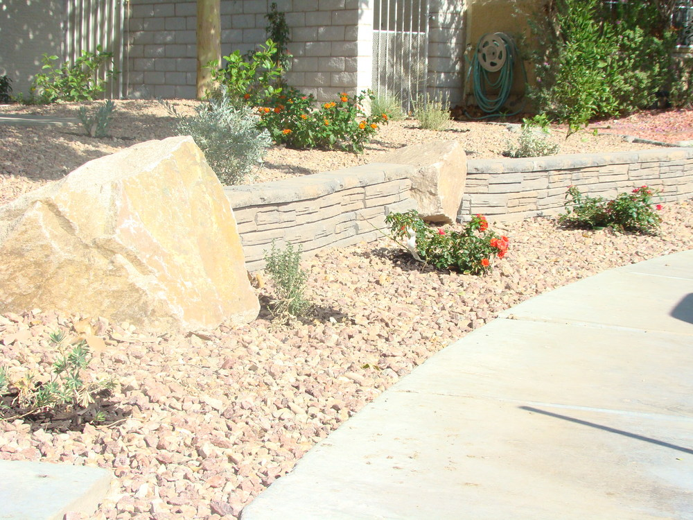 Landscape design and installation lv yard doctor for Low maintenance desert plants