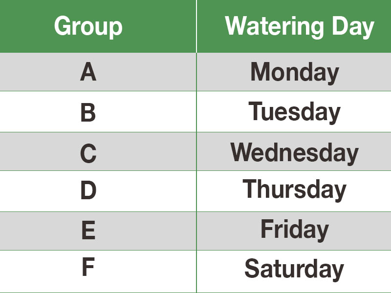 SNWA Winter Watering Schedule