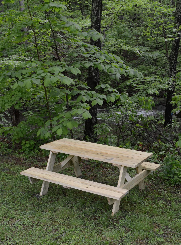 picnic table wsc.jpg