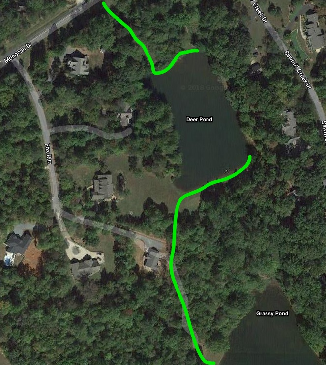 """The green lines are the approximate locations of the easements for Deer Pond. Access can be from Monocan Drive (look for a Brown and White """"only property owners and accompanied Guests may fish"""" sign). Access is also from  Grassy Pond .     See Google Map HERE"""