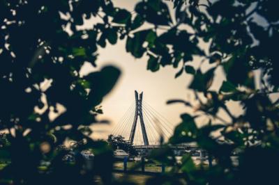 Lekki-Ikoyi Link Bridge, Lagos