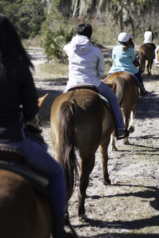2016 Horseback Riding(1 of 68) (11).jpg