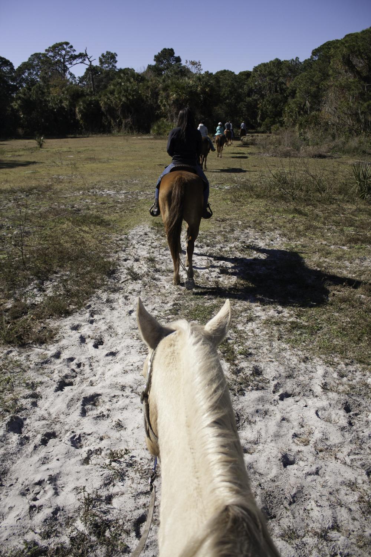 2016 Horseback Riding(1 of 68) (12).jpg