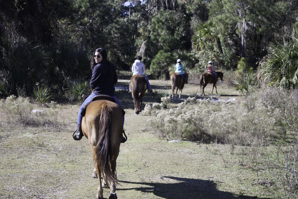 2016 Horseback Riding(1 of 68) (13).jpg