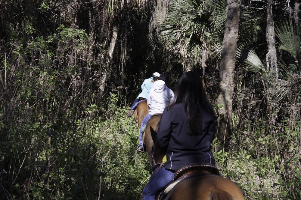 2016 Horseback Riding(1 of 68) (16).jpg
