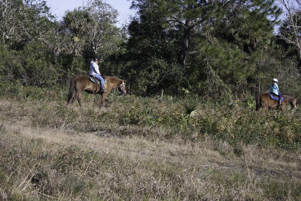2016 Horseback Riding(1 of 68) (22).jpg