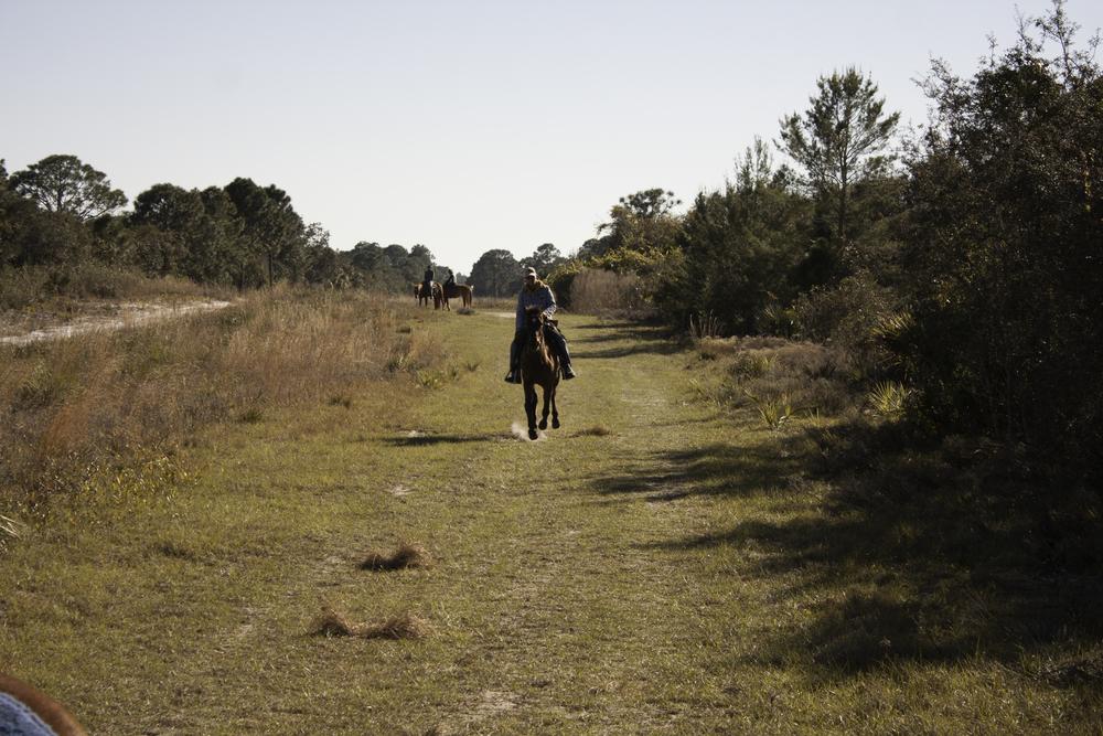 2016 Horseback Riding(1 of 68) (27).jpg