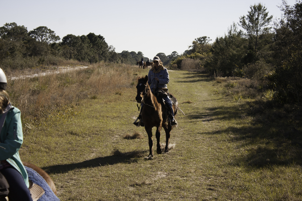 2016 Horseback Riding(1 of 68) (28).jpg