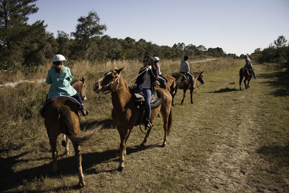 2016 Horseback Riding(1 of 68) (29).jpg