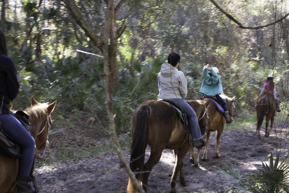 2016 Horseback Riding(1 of 68) (30).jpg