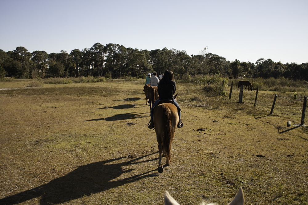 2016 Horseback Riding(1 of 68) (34).jpg