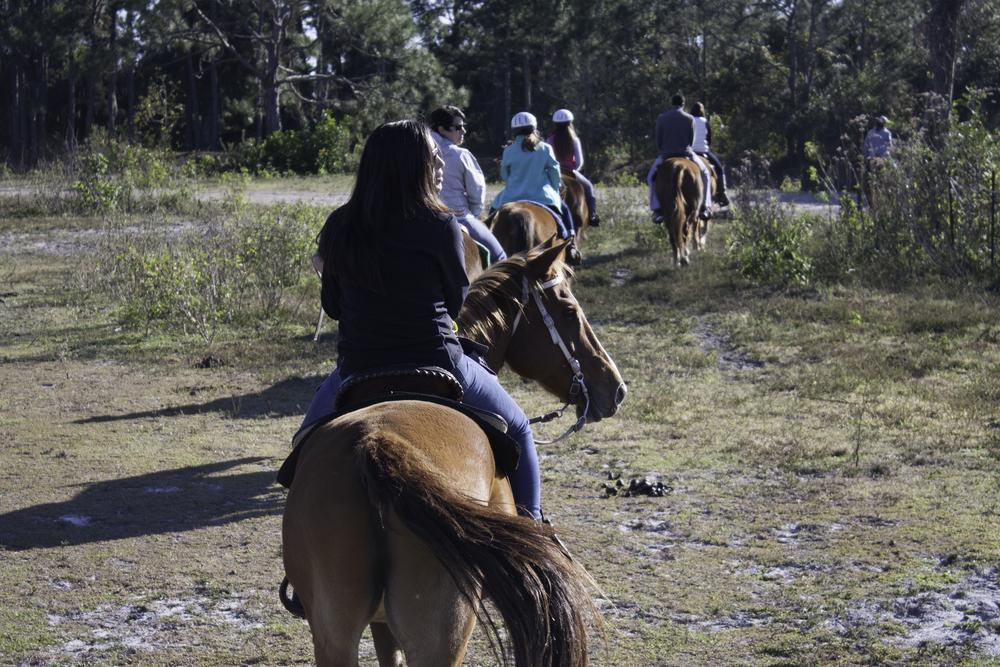 2016 Horseback Riding(1 of 68) (36).jpg