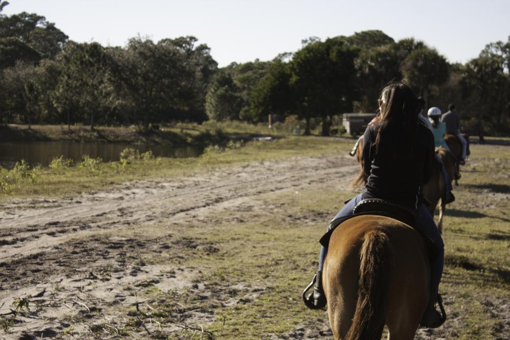 2016 Horseback Riding(1 of 68) (37).jpg