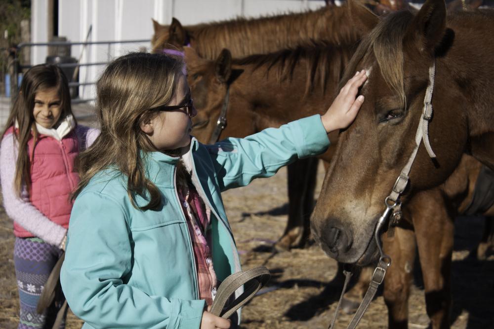 2016 Horseback Riding(1 of 68) (49).jpg