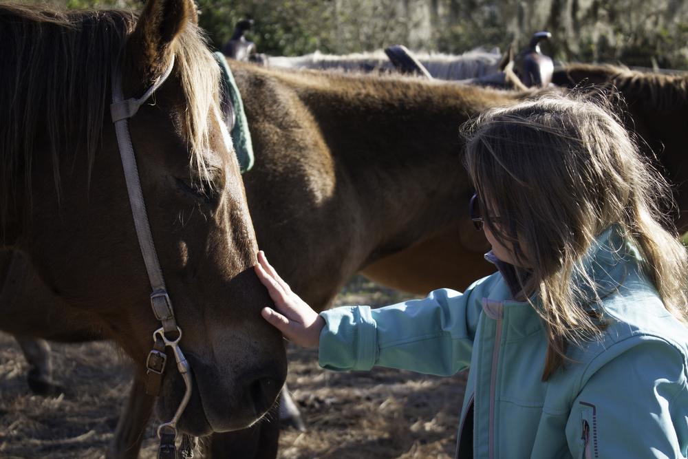 2016 Horseback Riding(1 of 68) (55).jpg