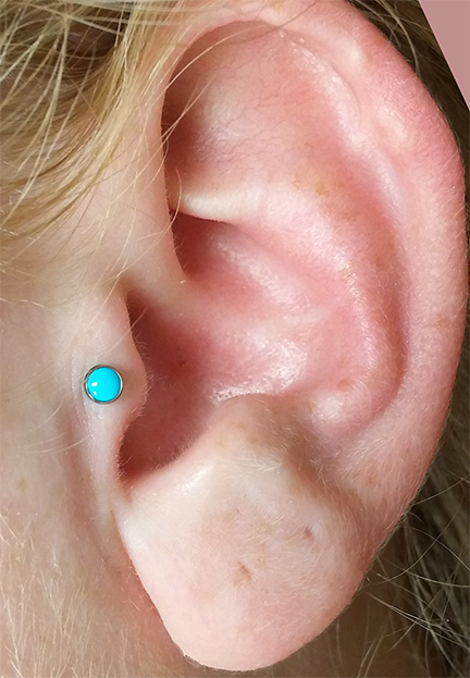 Tragus Turquoise.jpg