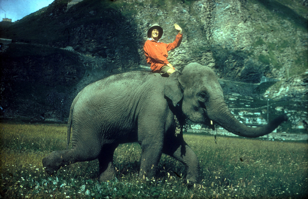 Jumbo, our Indian elephant with Michael riding.