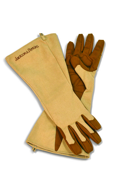 jp-rose-gloves_opt.jpg