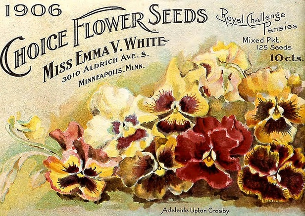 Vintage catalog from 1906. — Biodiversity Heritage Library/Flickr