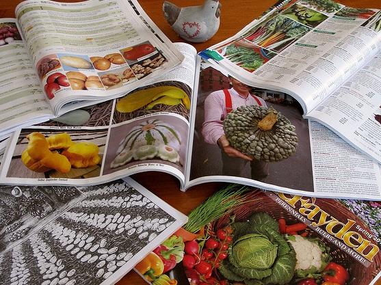 Garden catalogs, the stuff of dreams. — Dale Calder/Flickr