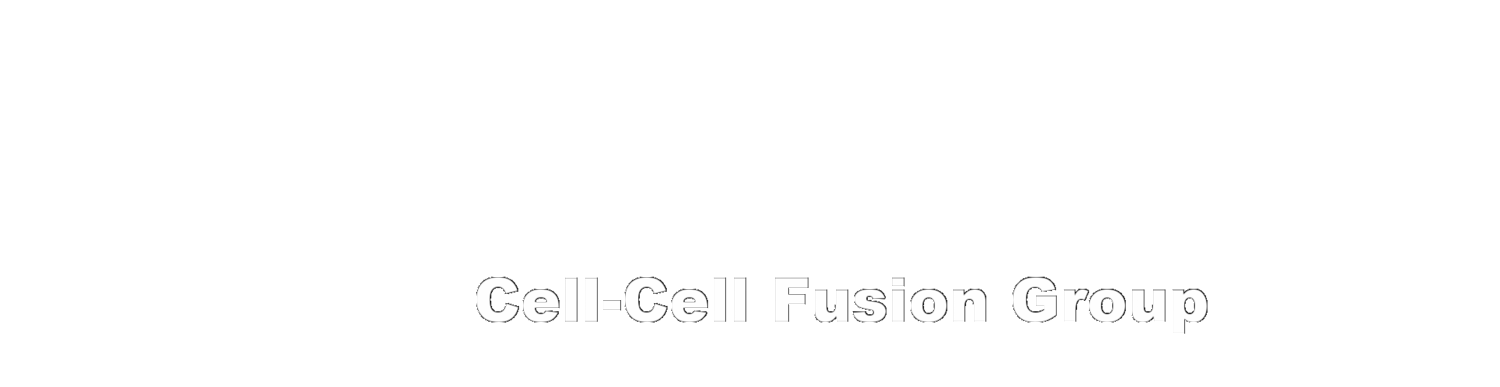 Cell-Cell Fusion Group