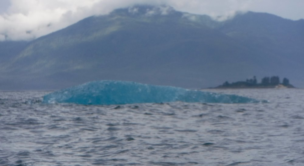 An ice berg whale!