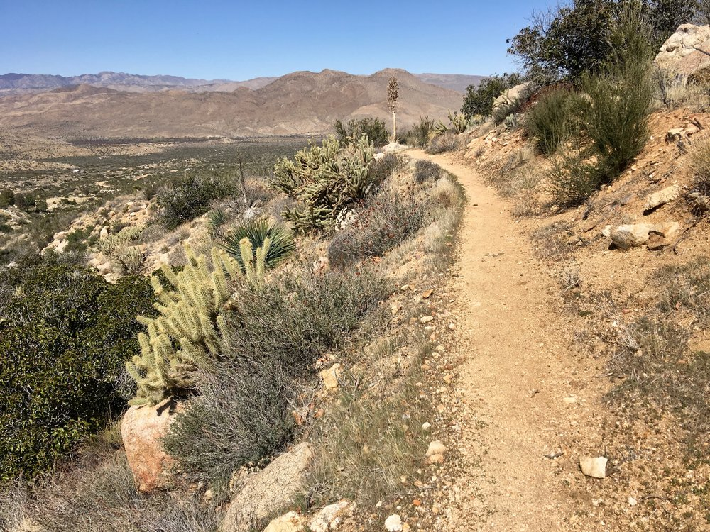 When we reach the road, more trail magic is here. There is plenty of water and treats. We wave good-by to the other hikers and continue to a campsite near the road with Jason and Spiceman who opted not to go to town.