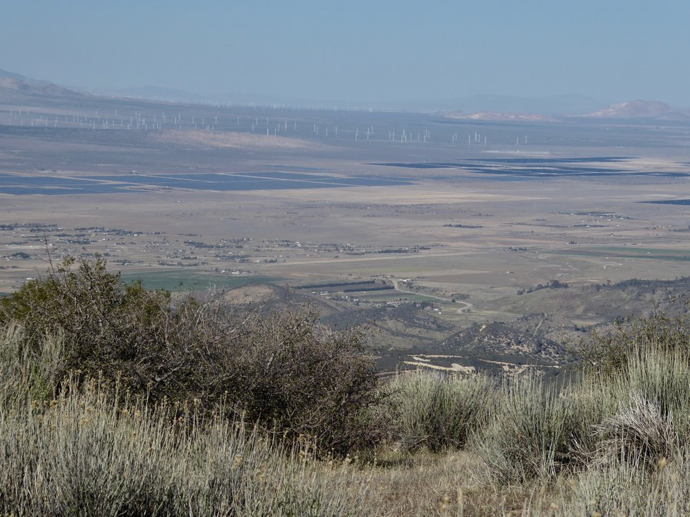 Tomorrow afternoon we will have the flattest walk of our hike as we walk on the CA aqueduct. We also will be walking among so many wind turbines.