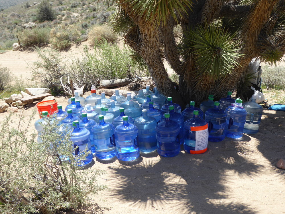 It is quite the welcoming oasis! We are at the front of many hikers to come. Since these caches are the only water for 30 miles they are quite appreciated. There may be as much as 1000 gallons of water brought in over the summer. At the cache we meet 3 hikers in there 60's. Two of them are finishing up a four year journey of hiking the entire PCT in sections. They will be done at Walker Pass which is about 20 miles away. We camel up which means we drink a good amount of water and get psyched to climb back out of the valley. It is quite the up for the end of the day, but we take it step by step and enjoy the beauty of the wildflowers that hug the path.