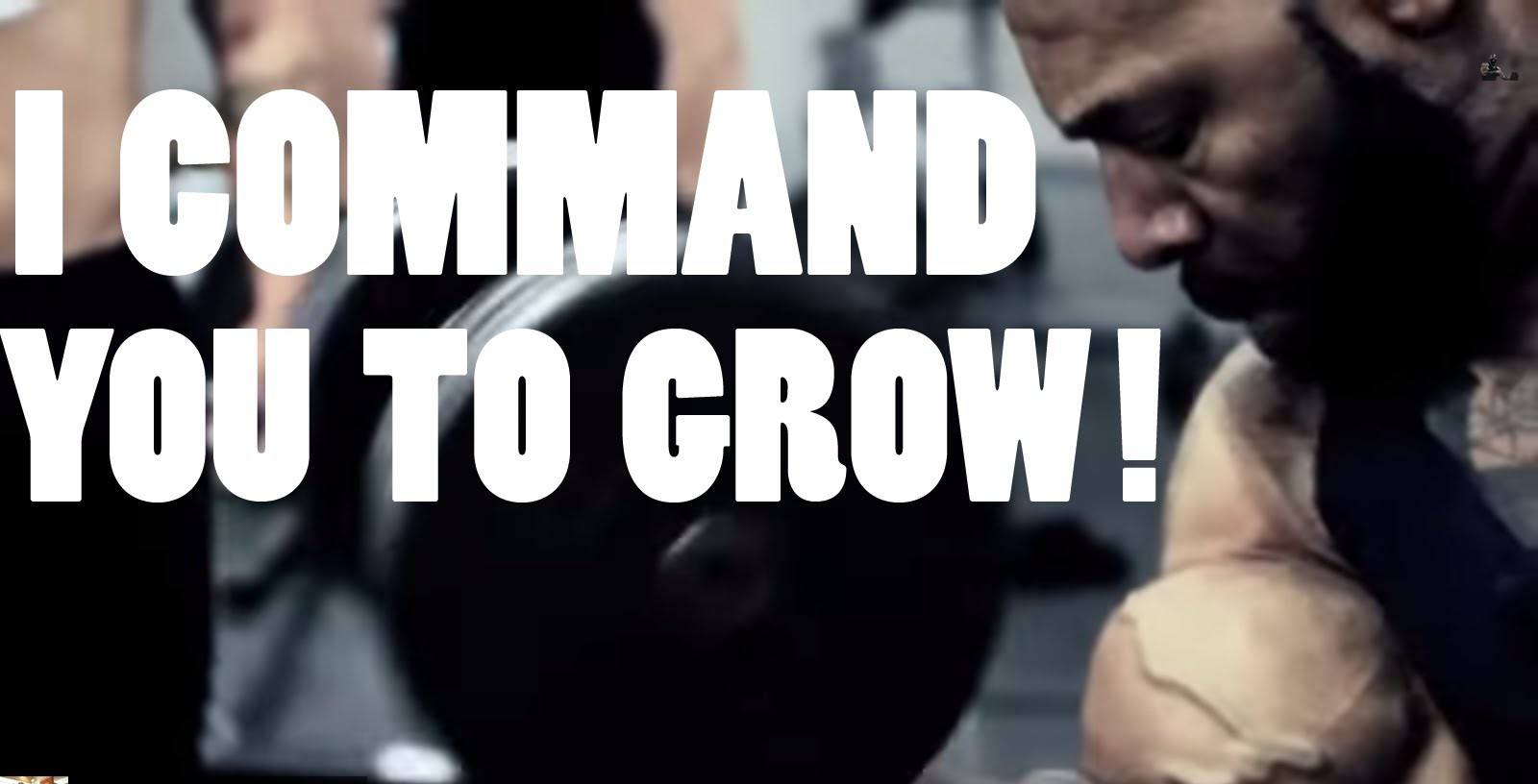 CT Fletcher doesn't believe in overtraining, but, then again, he almost died, and he doesn't do cardio every day.