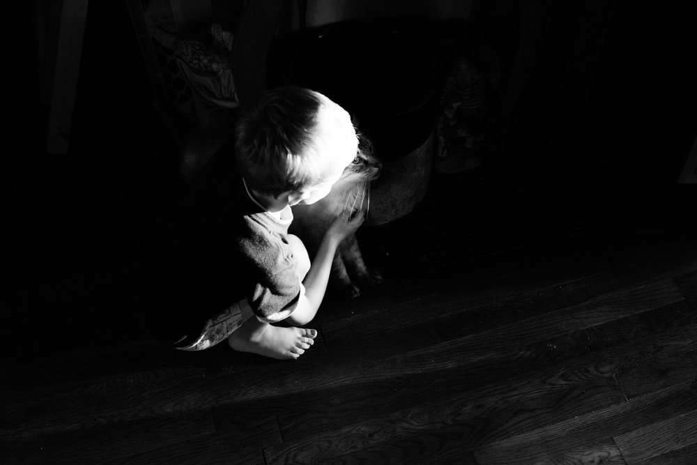 "Dawson cuddles his cat, one of many family pets, in the floor of his living room. His foster parents, Laura and Dewayne, have chickens, dogs, cats, and one donkey. ""We just want to teach the boys how to care for things the right way,"" Laura said when asked why they had so many animals. Pets have always been important to the Webb family. When their dog of many years, Leo, died recently, Laura said that Dawson learned about death for the first time. ""I took him to the cemetery and explained that that's where Leo would stay, that he wasn't coming back,"" Laura said."