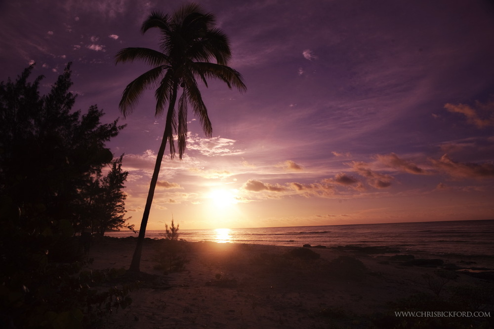 Bickford_CaymanWEB.34.JPG