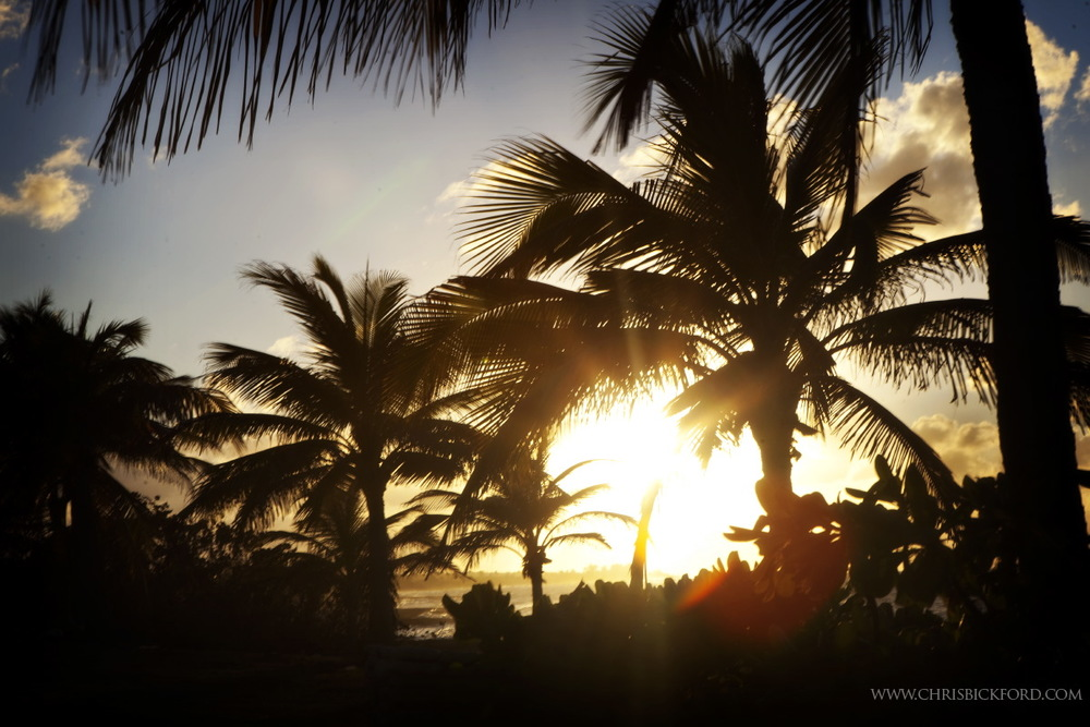 Bickford_CaymanWEB.49.JPG