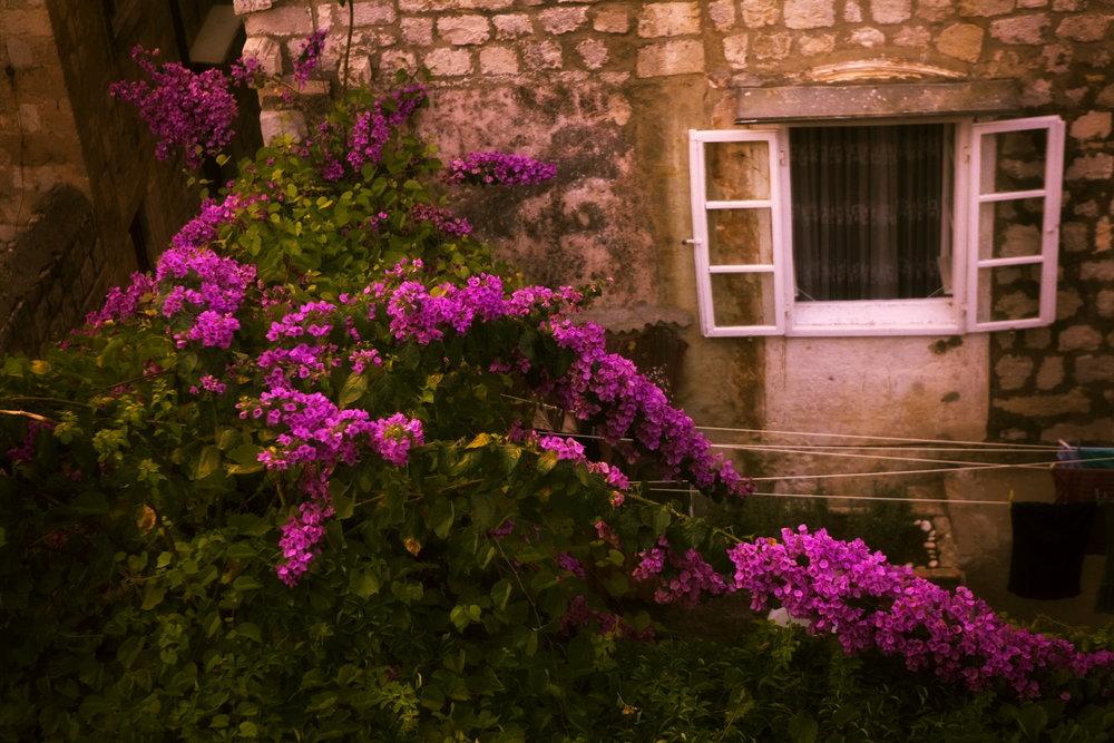 Bickford_DubrovnikTablet.003.JPG