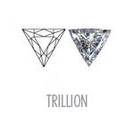trillion3.jpg