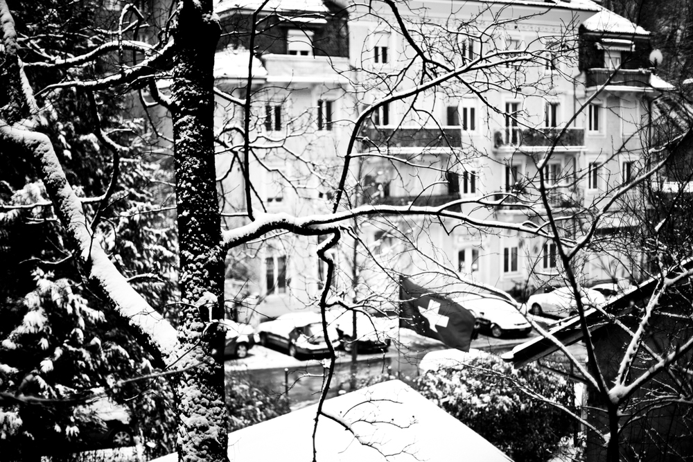 Switzerland 3 (105 of 237)201320130115-Edit.jpg