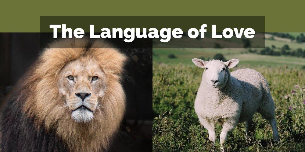 The Language of Love.jpg