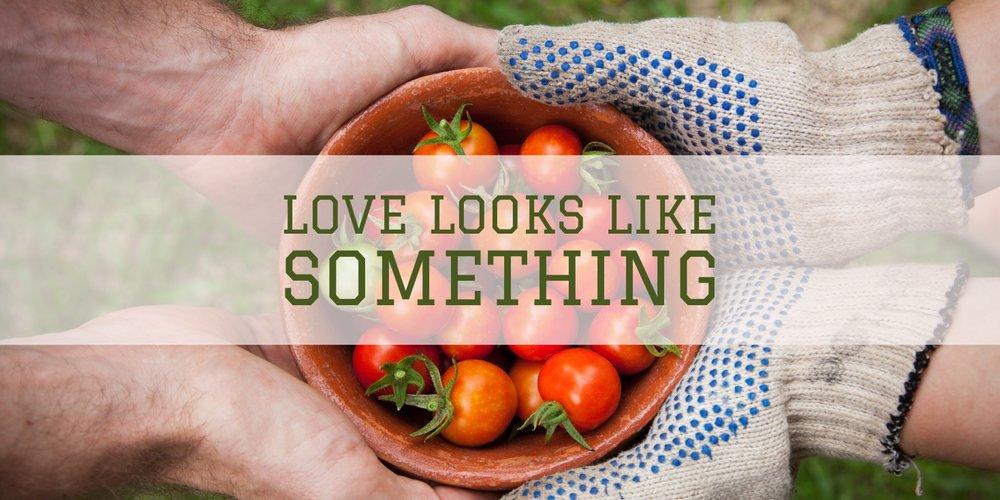 Love Looks Like Something.jpg