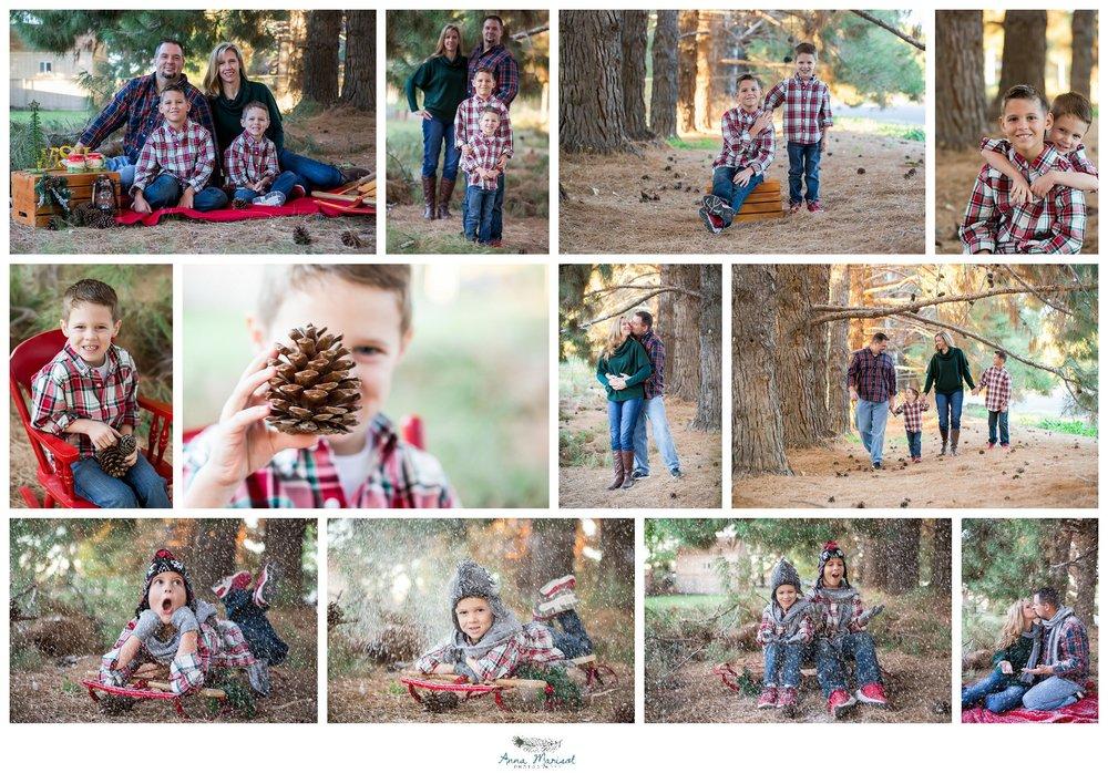 Goodyear Pine Trees - Goodyear.jpg