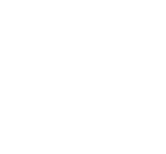 icon_brand_diamond_300h.png