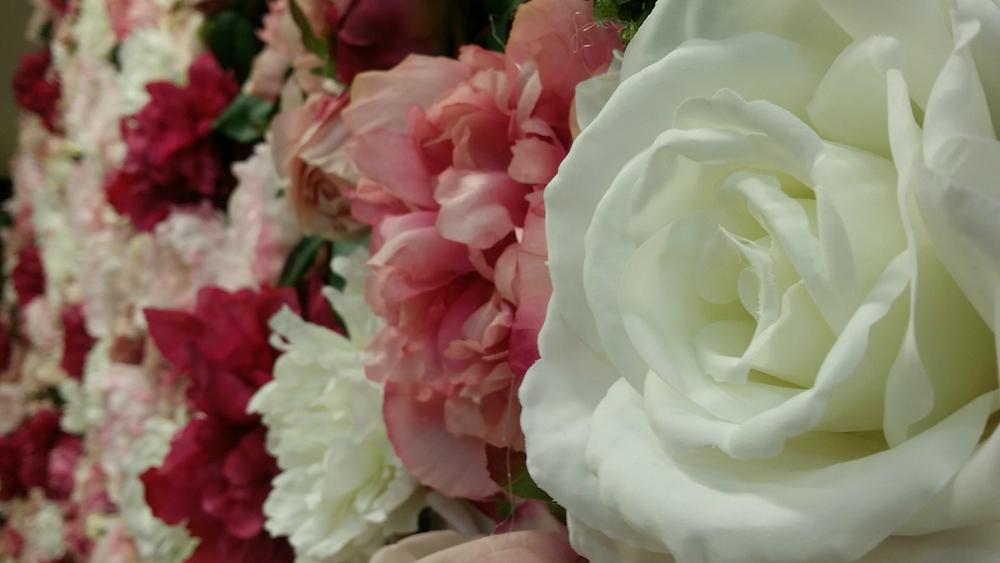 RoseWall_Closeup2.jpg